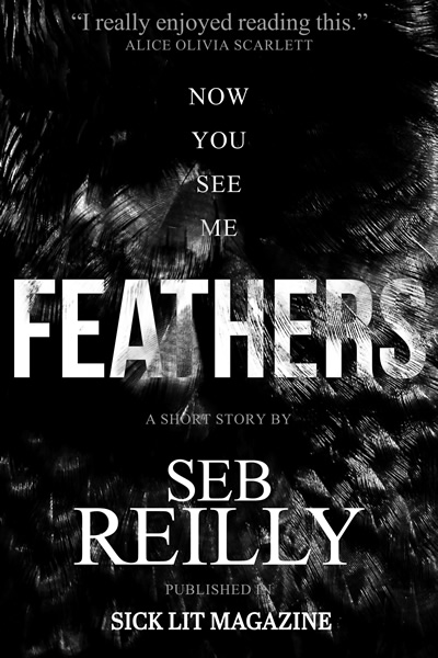 Feathers, A Short Story by Seb Reilly