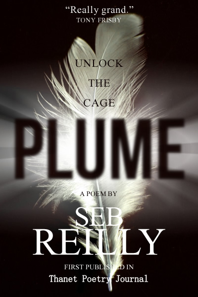 Plume, A Poem by Seb Reilly